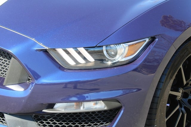 2018 Ford Mustang Shelby Gt350 Charlotte Nc Serving Indian Trail